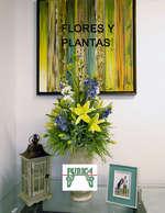 Ofertas de Burica, Flores y plantas