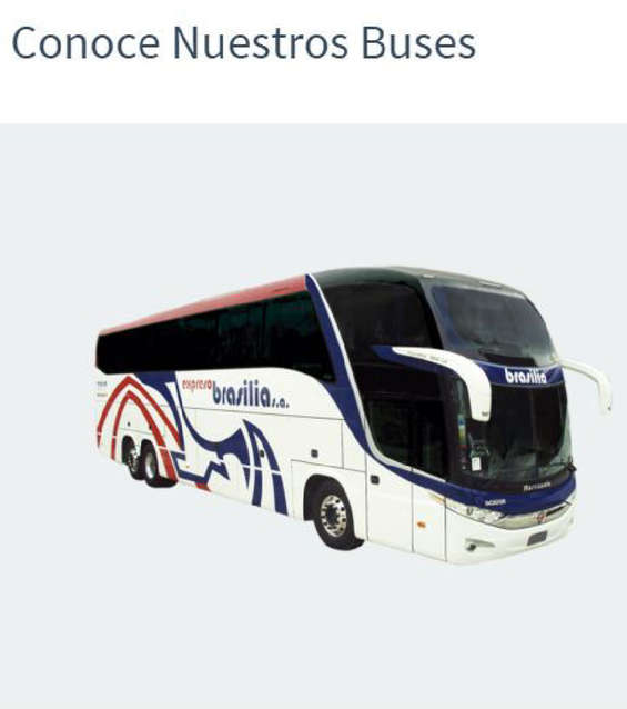 Ofertas de Expresos Brasilia, Conoce nuestros buses