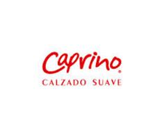 Catálogos de <span>Calzado Caprino</span>