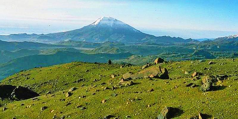 Catálogos y ofertas de tiendas en Andes