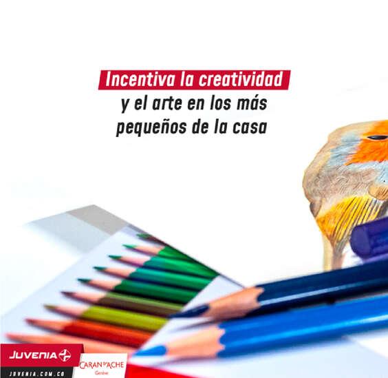 Ofertas de Juvenia, Juvenia creativos