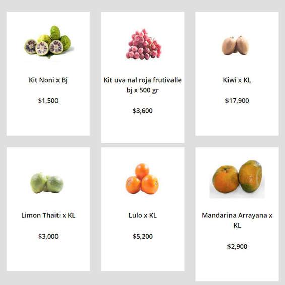 Ofertas de Surtifruver, Frutas Frescas