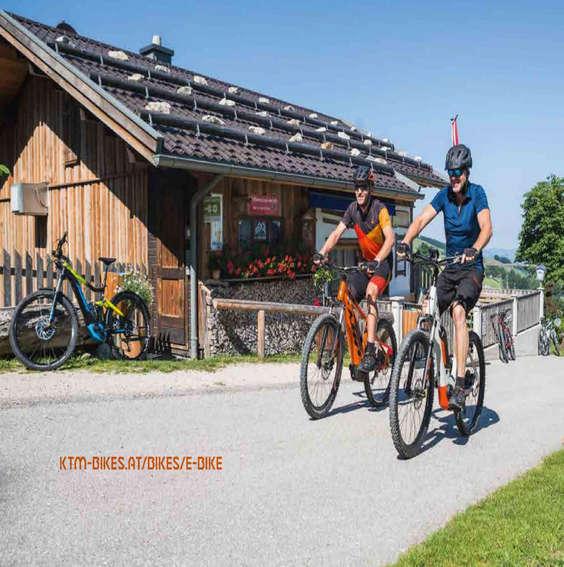 Ofertas de KTM, KTM 2019