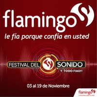 Festival del Sonido